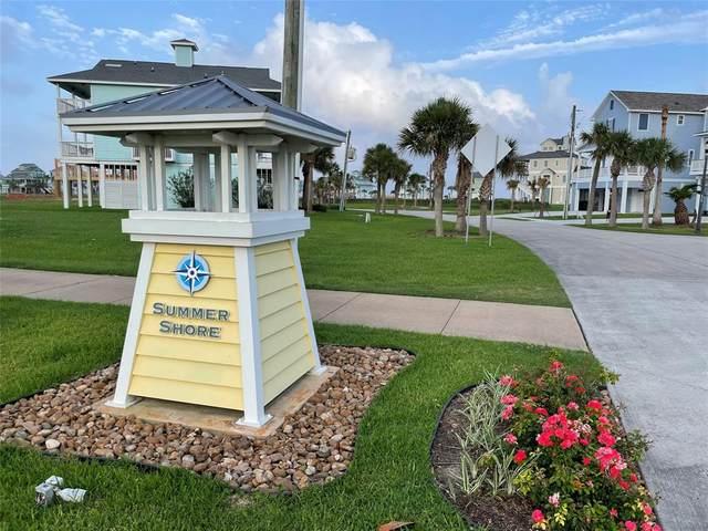 4139 Great Blue Heron Drive, Galveston, TX 77554 (MLS #25289525) :: Lerner Realty Solutions