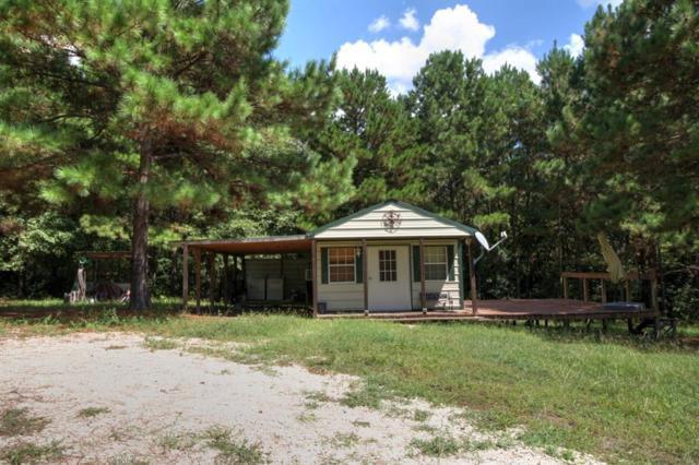 353 Cr 3360, San Augustine, TX 75972 (MLS #25323579) :: Texas Home Shop Realty