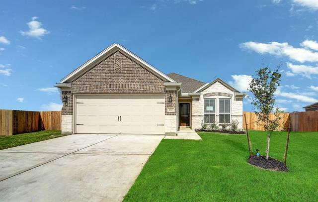 4303 Greeley Lane, Rosenberg, TX 77471 (MLS #25451715) :: The SOLD by George Team