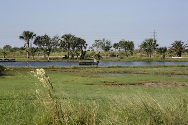 Lot 15 El Lago St, Galveston, TX 77554 (MLS #25489692) :: Texas Home Shop Realty