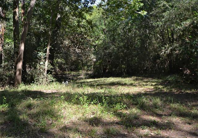 1315 Woodvine, Friendswood, TX 77546 (MLS #2555697) :: Caskey Realty