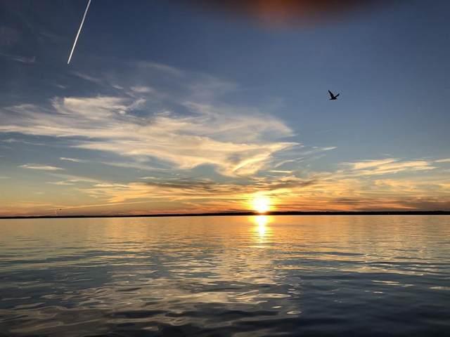 624 Lakeview Harbor, Onalaska, TX 77360 (MLS #25565966) :: Ellison Real Estate Team