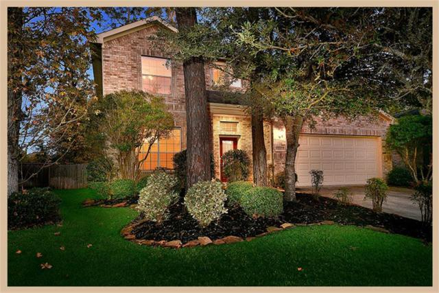 22 Ebony Oaks Place, The Woodlands, TX 77382 (MLS #25575584) :: Texas Home Shop Realty
