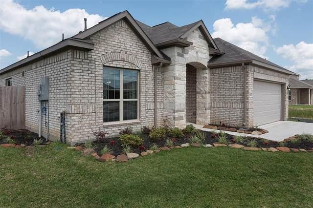 3206 Royal Albatross Drive, Texas City, TX 77590 (MLS #25618496) :: CORE Realty