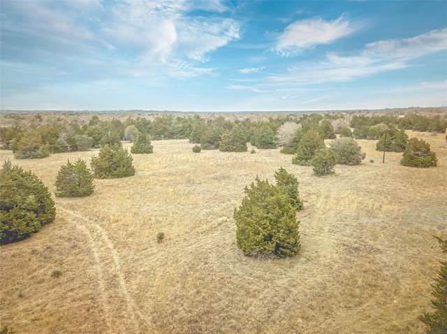 0 Upshaw Road, Carmine, TX 78932 (MLS #25624103) :: My BCS Home Real Estate Group