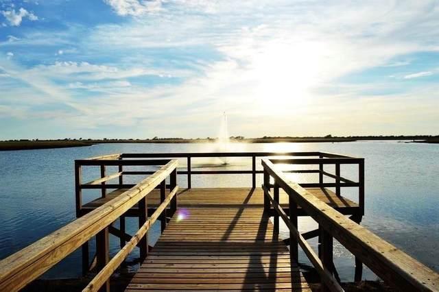 0 Aquarius Lane, Port Lavaca, TX 77979 (MLS #25641168) :: Michele Harmon Team