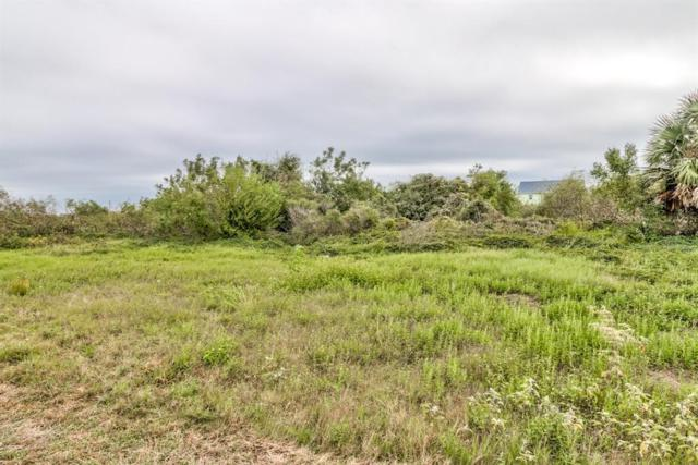 1785 Sheephead Lane, Crystal Beach, TX 77650 (MLS #25642682) :: KJ Realty Group