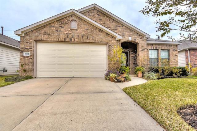 24230 Courtland Oaks Street, Katy, TX 77494 (MLS #25756842) :: See Tim Sell