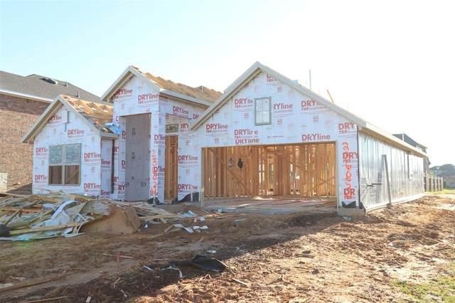 23683 Alder Branch Lane, New Caney, TX 77357 (MLS #25757304) :: The Home Branch