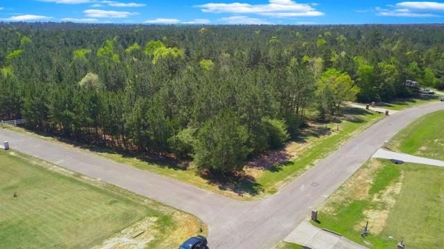 11444 W Kristina Circle, Montgomery, TX 77316 (MLS #25766137) :: The SOLD by George Team