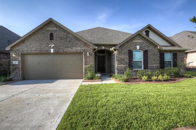 24123 Cane Fields Road, Katy, TX 77493 (MLS #25791876) :: Giorgi Real Estate Group