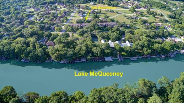 526 Blue Heron Lane, McQueeney, TX 78123 (MLS #25850425) :: The Home Branch