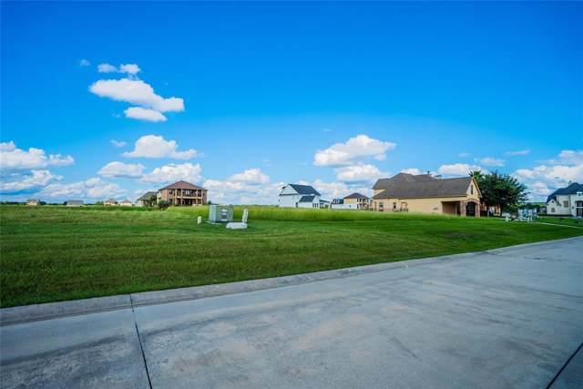12566 Saint Ann Court, Willis, TX 77318 (MLS #2585972) :: The Home Branch