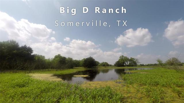10433 County Road 162, Somerville, TX 77879 (MLS #25885977) :: Texas Home Shop Realty