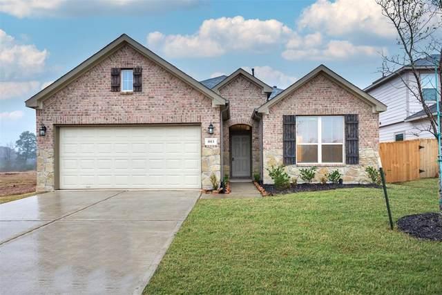13524 Bonita Island Lane, Texas City, TX 77568 (MLS #25892746) :: The Bly Team