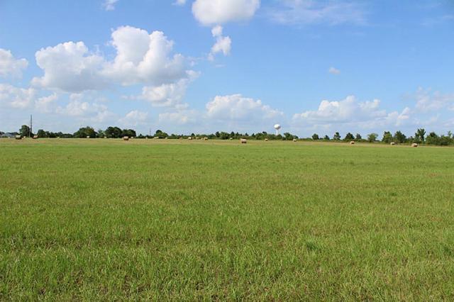 20834 Cochran / Fm 1098 / University Drive, Prairie View, TX 77445 (MLS #25901816) :: The Sansone Group