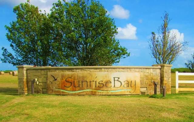 Block 3 Lot 1 Sunrise Bay Drive, Port Lavaca, TX 77979 (MLS #25924615) :: Texas Home Shop Realty