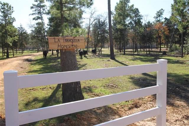 363 Furr Mays B Road, Smithville, TX 78957 (MLS #25925669) :: NewHomePrograms.com LLC