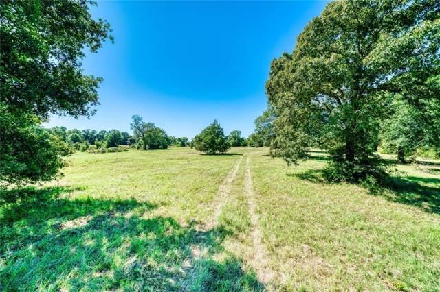 TBD Fm 247 American Legion Drive, Huntsville, TX 77320 (MLS #25941394) :: The SOLD by George Team
