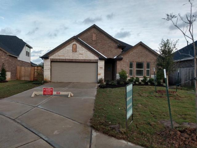 206 Goose Barnacle Lane, Rosenberg, TX 77469 (MLS #25978604) :: Magnolia Realty