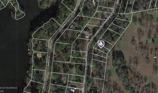 Lot 21 Skylane Drive, Montgomery, TX 77316 (MLS #25979854) :: My BCS Home Real Estate Group