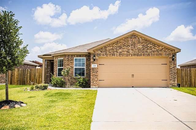 2306 Nautica Terrace Drive, Texas City, TX 77568 (#26044612) :: ORO Realty