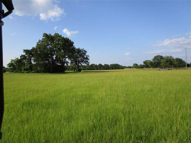 00 County Rd 1640, Grapeland, TX 75844 (MLS #26077778) :: The Heyl Group at Keller Williams