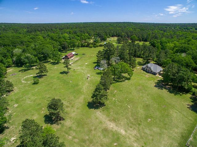1571 Dabney Bottom Road, Coldspring, TX 77328 (MLS #26089259) :: Texas Home Shop Realty