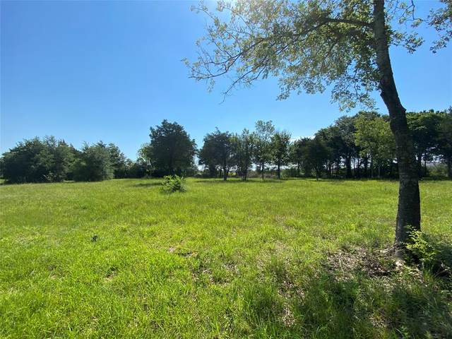 3521 Tallow Forest Street, League City, TX 77539 (MLS #26119352) :: Lerner Realty Solutions