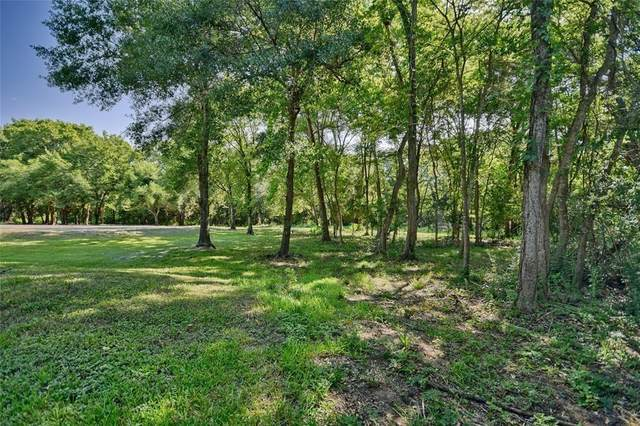 146 Wild Phlox Drive, Bellville, TX 77418 (MLS #26141293) :: The Home Branch