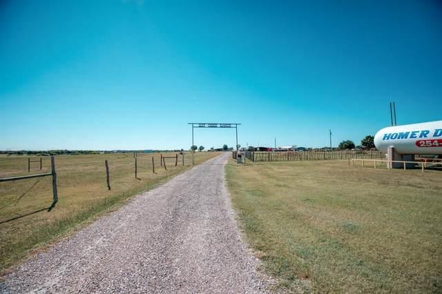 3995 Franklin Road, Troy, TX 76579 (MLS #26203639) :: Michele Harmon Team