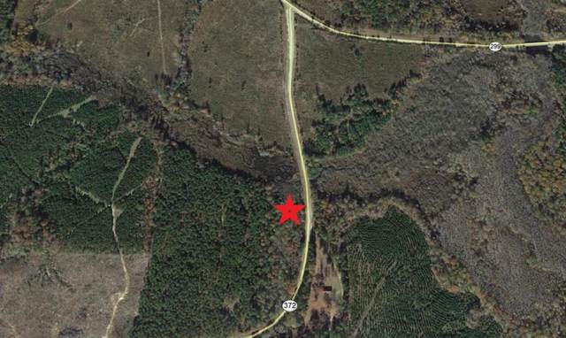 0 State Hwy 372 East, Other, AR 71857 (MLS #26238828) :: The SOLD by George Team