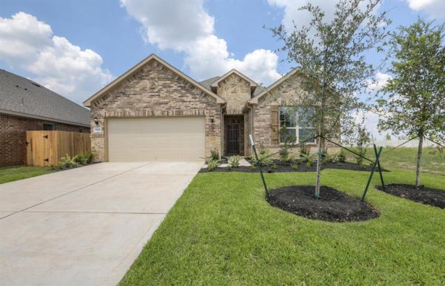 2318 Cherrington Woods Lane, Rosenberg, TX 77469 (MLS #26244138) :: The Heyl Group at Keller Williams