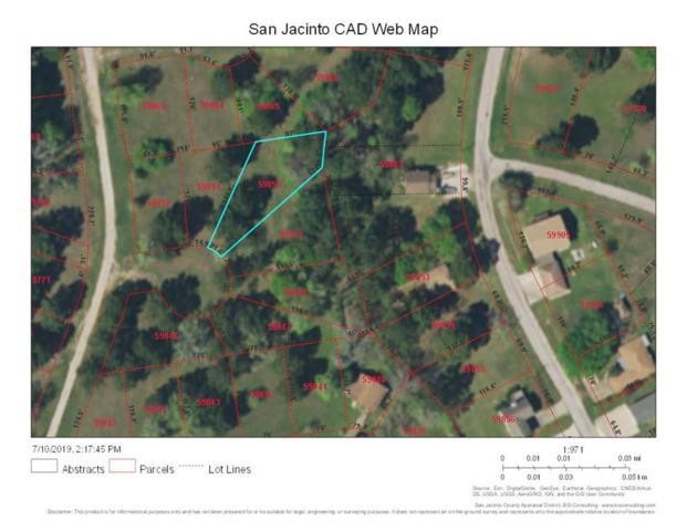 100 Inwood Circle, Coldspring, TX 77331 (MLS #26361874) :: The Jill Smith Team