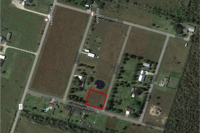 000 Bayou Dr County Road, Liverpool, TX 77511 (MLS #26398504) :: The Stanfield Team | Stanfield Properties