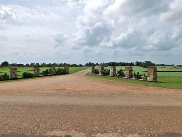 11969 Jalowy Road, Cat Spring, TX 78933 (MLS #26408619) :: Ellison Real Estate Team