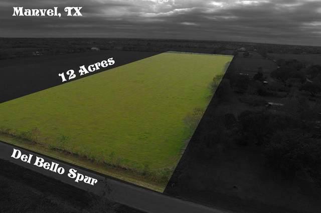 XX Del Bello Spur, Manvel, TX 77578 (MLS #26410919) :: Homemax Properties