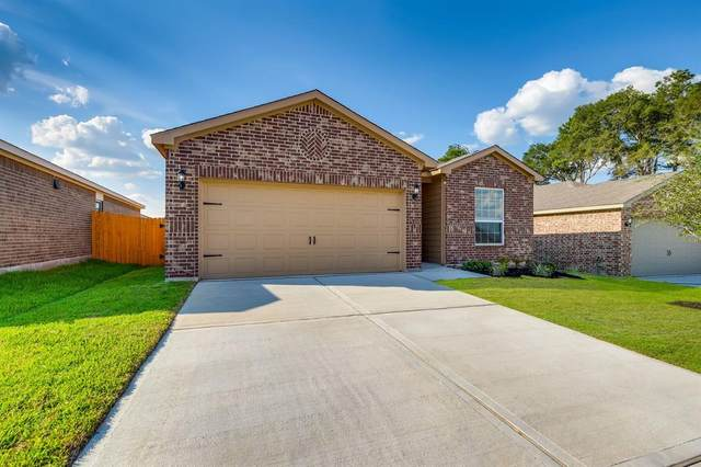 22518 Steel Blue Jaybird Drive, Hockley, TX 77447 (MLS #26501534) :: The Sansone Group
