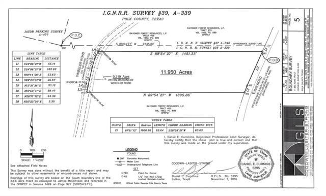 11.950 Ac Wheeler Road, Corrigan, TX 75939 (MLS #26504990) :: Christy Buck Team
