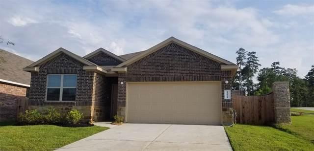 13921 Nicolet Arbor Lane, Conroe, TX 77384 (MLS #26523814) :: Johnson Elite Group
