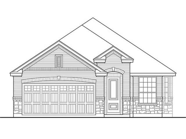 15210 Monal Trie Drive, Humble, TX 77346 (MLS #2654370) :: Connell Team with Better Homes and Gardens, Gary Greene