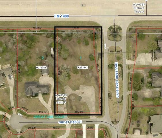 12102 Great Oak Court, Magnolia, TX 77354 (MLS #26592452) :: Texas Home Shop Realty