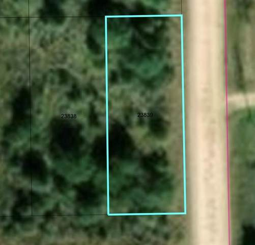 N/A Kenneth James, Waller, TX 77484 (MLS #26658139) :: CORE Realty