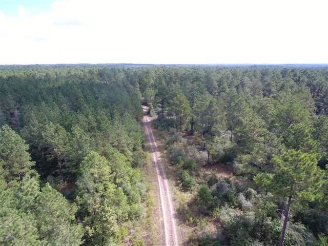 50 ac Kickapoo Road, Groveton, TX 75845 (MLS #26675973) :: The SOLD by George Team