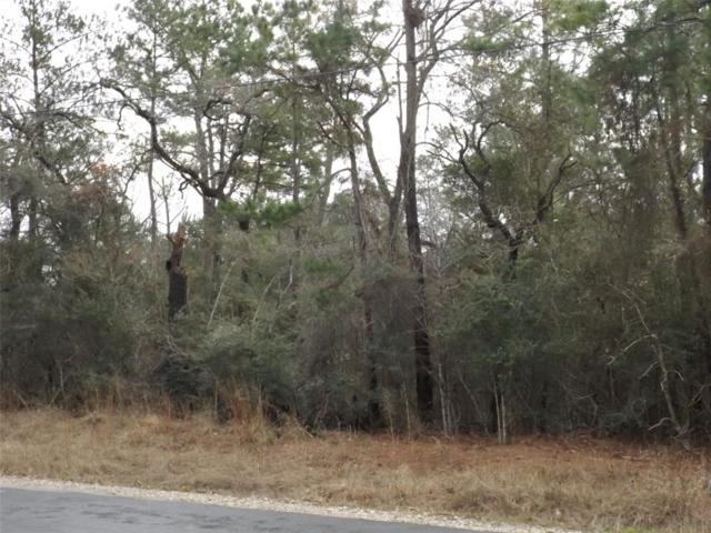 7916 Clark Road, Plantersville, TX 77363 (MLS #26677904) :: Fairwater Westmont Real Estate
