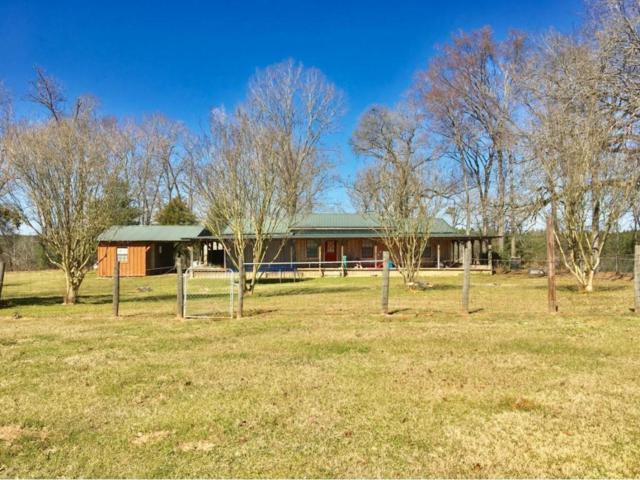 3390 County Road 205, San Augustine, TX 75972 (MLS #26731858) :: Green Residential