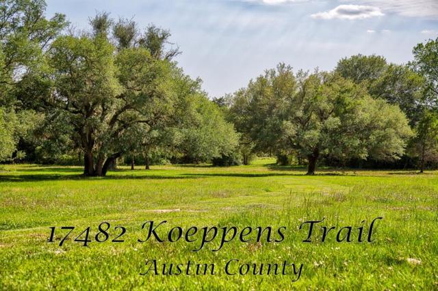 17482 Koeppens Trail, Cat Spring, TX 78933 (MLS #2675124) :: Texas Home Shop Realty