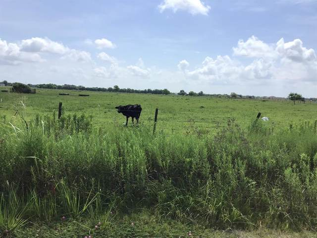 0 County Road 382, Rosharon, TX 77583 (MLS #26787886) :: The Property Guys
