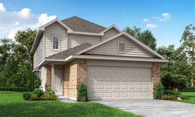 205 Black Bear Drive, Huntsville, TX 77340 (MLS #26793062) :: Connect Realty
