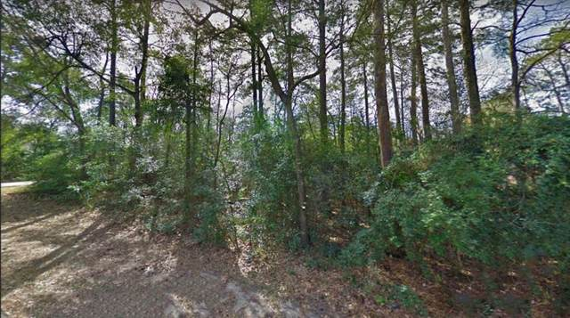 Lot 294 Apple Valley Dr And Deep Dale Ln, Conroe, TX 77304 (MLS #26810415) :: Lerner Realty Solutions
